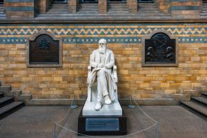 what can Charles Darwin teach us about travel? – Lonely Planet's travel blog